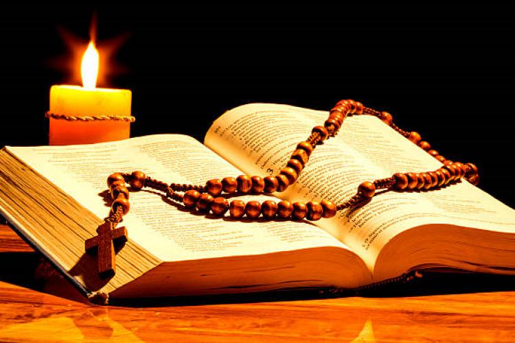 CNBB: No Mês da Bíblia, dom Armando Bucciol fala sobre os textos bíblicos nas celebrações