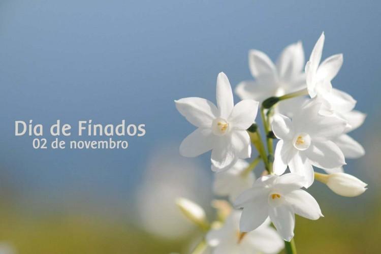 Confira a programação da celebração de Finados nos cemitérios de Montes Claros