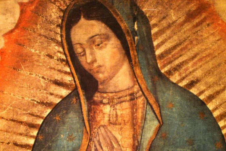 """""""O manto de Guadalupe é de origem divina"""""""