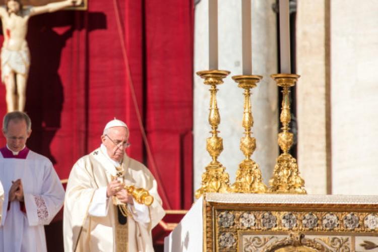 Papa Francisco anuncia sínodo mundial dedicado à Amazônia